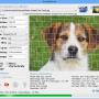 Freeware - AndreaMosaic 3.39 screenshot
